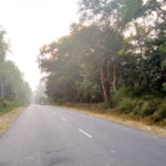 Widening of NH 275 between Kushalnagar and Sampaje: Public opinion builds against Project