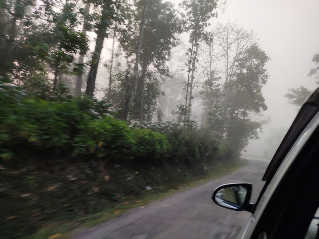 Driver through Coorg on a misty morning